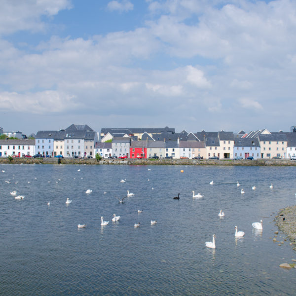 Galway-7