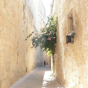 Kurzy angličtiny pro dospělé - Malta